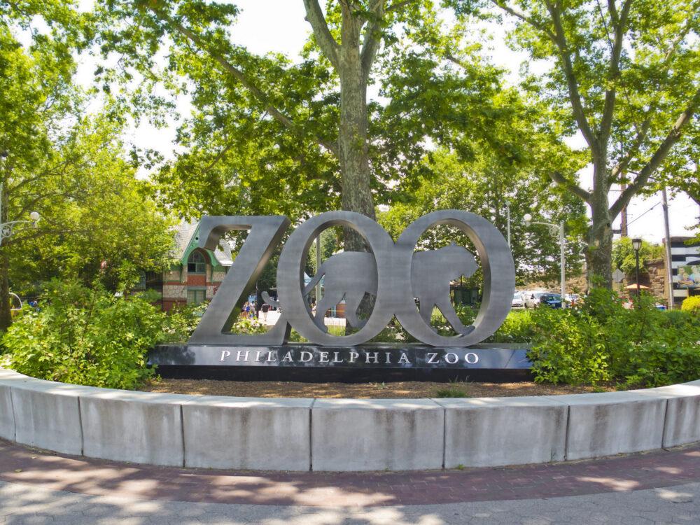 Turnkey Telecommunications Supports Philadelphia Zoo-a-Thon